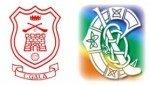 Cuala Camogie Logo