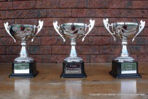 Cups_Cuala_ssip_leagues