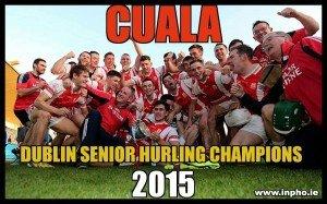 Senior_Hulers_2015Champions